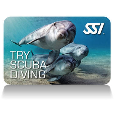 TRY SCUBA (POOL) TRY SCUBA DIVING (OPEN WATER)
