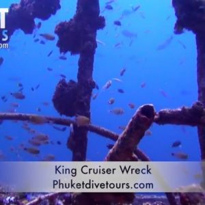 Best marine life in Phuket